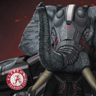 Alabama Battle Suit