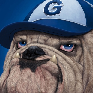 Georgetown University Bulldog