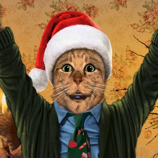 National CatPun's Christmas Vacation