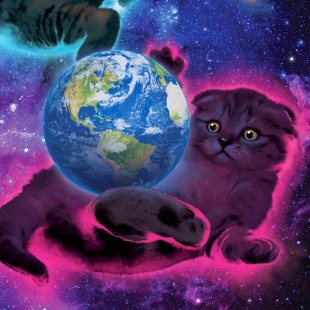 Three Kittens Three Planets