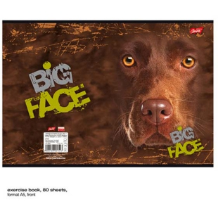 St Majewski Chocolate Lab Big Face ®